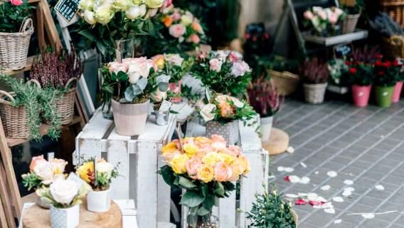 Kwiaciarnia pomaga pani Helenie w walce z samotnością