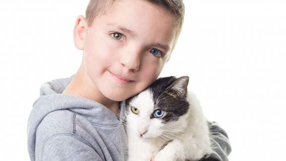Oczy Maddena i jego kota sprawiają, że obaj wyglądają jak bracia
