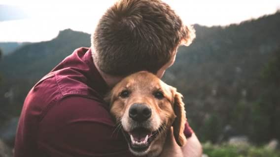 Chińczycy zakazują jedzenia psów. Wreszcie uznali, że to towarzysze człowieka, a nie zwierzęta hodowlane
