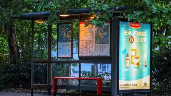 Ponad 300 przystanków autobusowych dla pszczół w Holandii