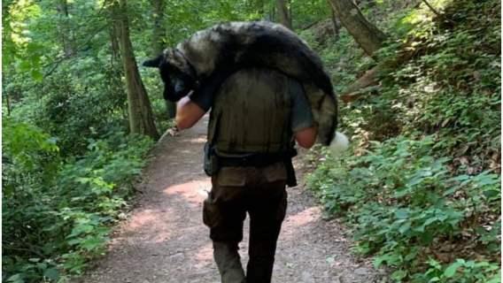 Bohaterski strażnik uratował odwodnionego psa. Zniósł go na plecach zdradliwym górskim szlakiem
