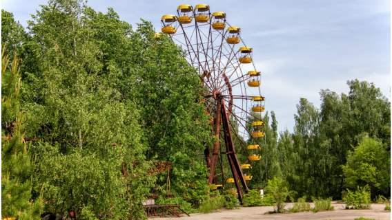 Katastrofa w Czarnobylu sprawiła, że natura zaczęła się odradzać