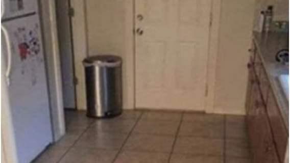 Na tym zdjęciu sprytnie ukrył się pies.