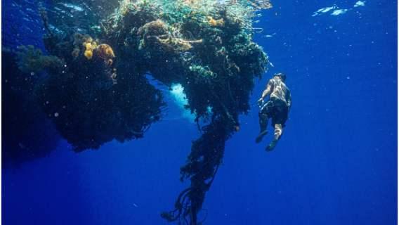 Ocean Voyages Institute pozwala zobaczyć, jak wiele śmieci znajduje się w oceanach.