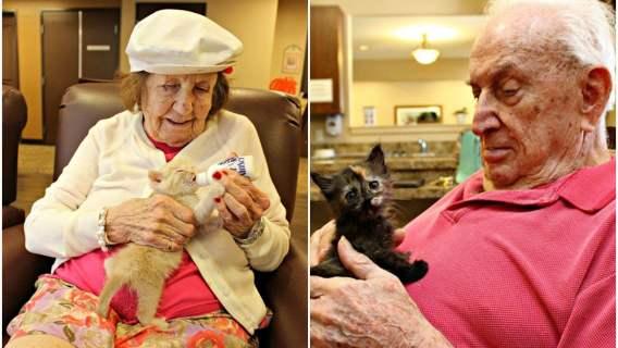 Pensjonariusze domu starców z kociakami.