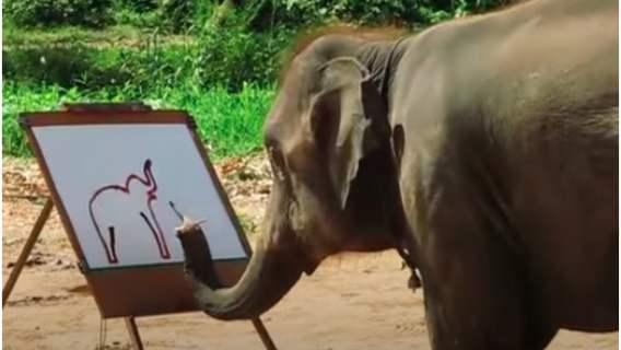 Słonie w Tajlandii malują obrazy