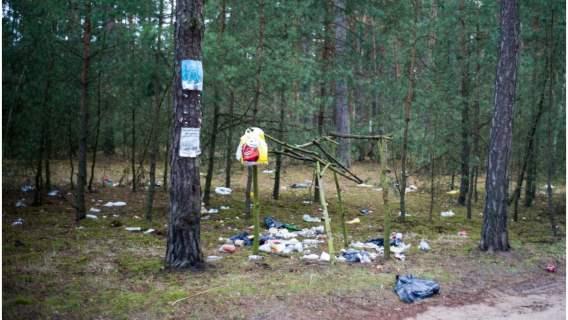 Ustawa wprowadza wyższe kary za zaśmiecanie terenów leśnych