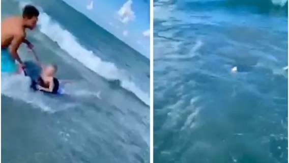 Rekin napadł na małego chłopca