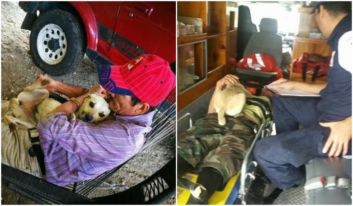 Pies uratował właściciela przed zawałem