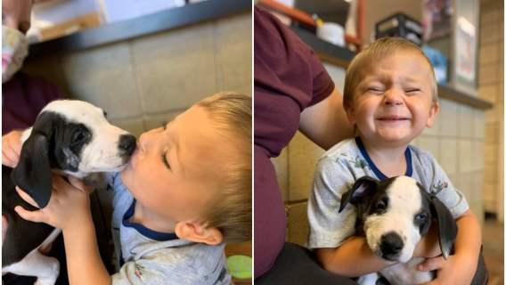 Chłopiec z rozszczepem wargi dostał psa z tą samą wadą