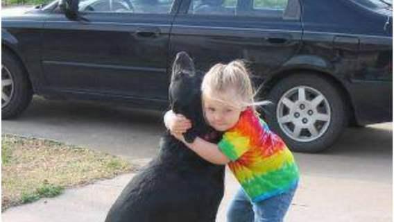 Pies, do którego napisała list jego była mała właścicielka