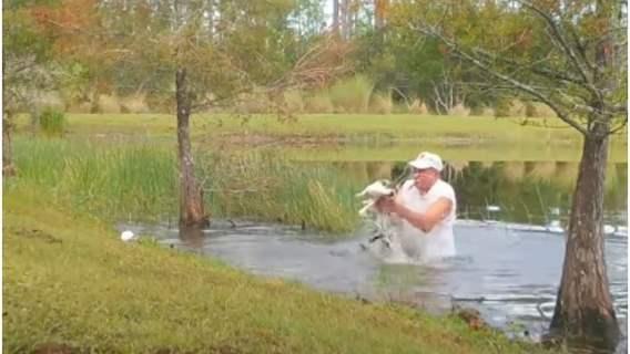 Emeryt z cygarem w ustach uratował szczeniaka z paszczy aligatora. Wideo ze zdarzenia podbija internet