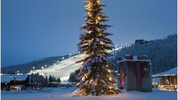 Pogoda na święta Bożego Narodzenia lepsza niż ktokolwiek by się spodziewał