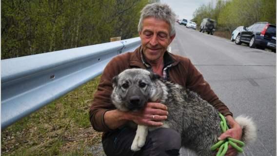 Pies został uratowany przez ratowników, którzy poszukują zaginionych po tragedii w Norwegii